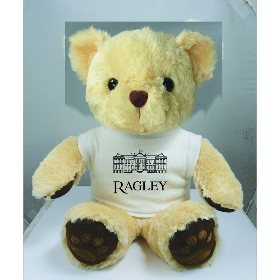 10946: 15 Inch Chester Teddy Bear With T-shirt