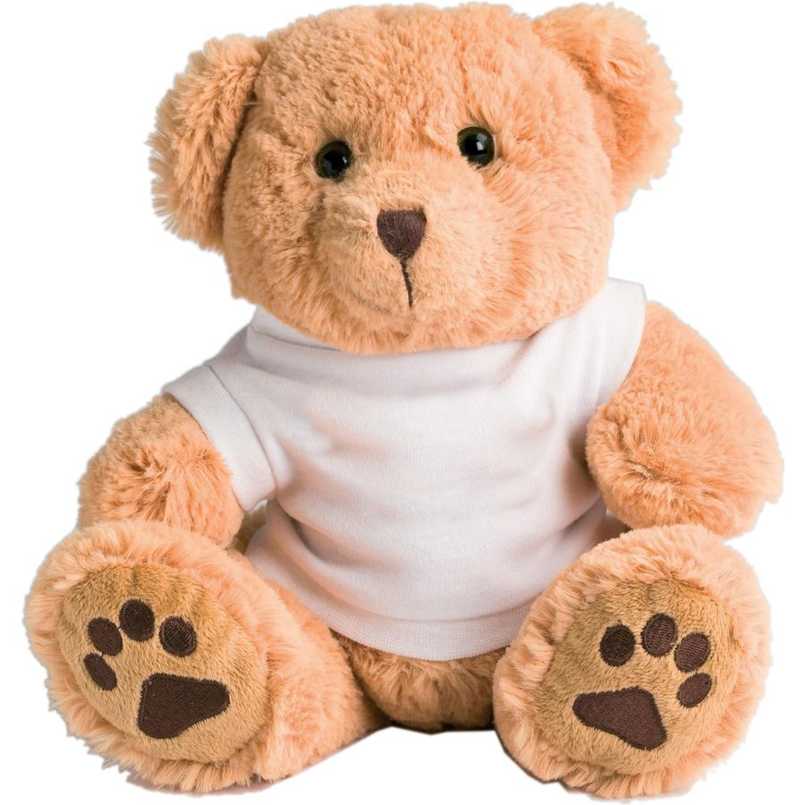 10947: 10 Inch Dexter Teddy Bear And T-shirt