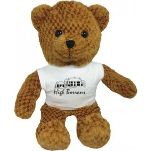 "15983: 15"" Jango Bear With T Shirt"